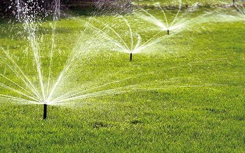 Системы полива для газона, уход за газоном, капельный полив