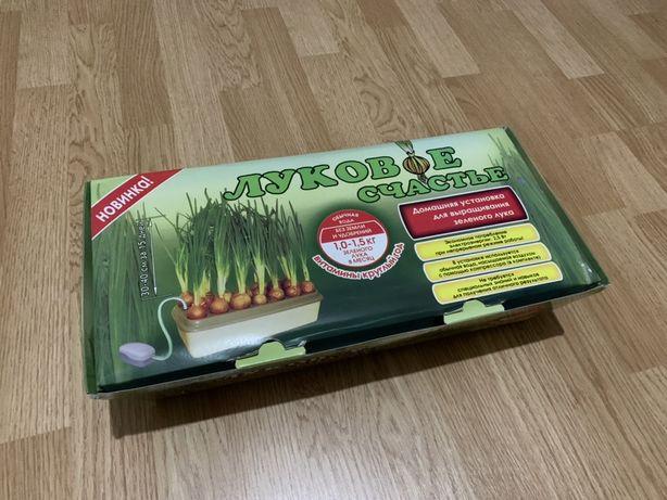 Прибор для выращивание зеленого лука