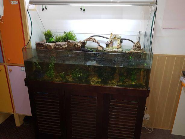 Vand acvarii deosebite, mobilier gradinita si aparat de fitness
