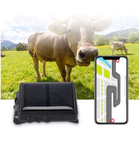 GPS трекер для лошадей, коров КРС ( КРС ) GSM