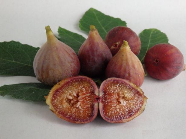 Smochin Românesc Maro 15-30 cm, pentru dulceată.