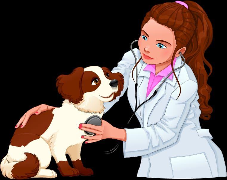 Ветеринар, ветеринарные услуги, ветеринар с выездом на дом