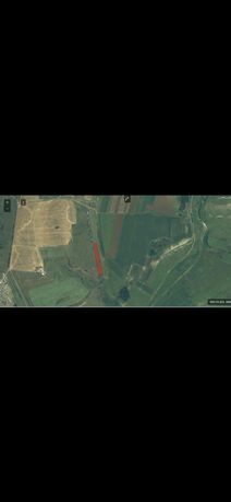 Vând teren extravilan agricol  5800mp cu front de 26m situat în Dezmir