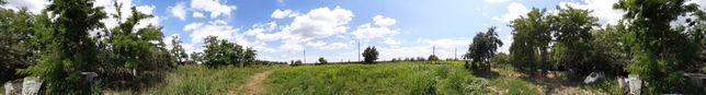 Teren intravilan sat Cotorca , Glodeanu-Silistea,Sat nou,Buzau 3255 mp