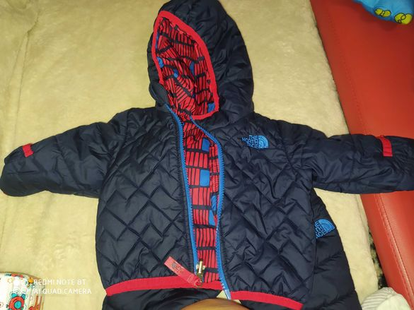 The north face, next