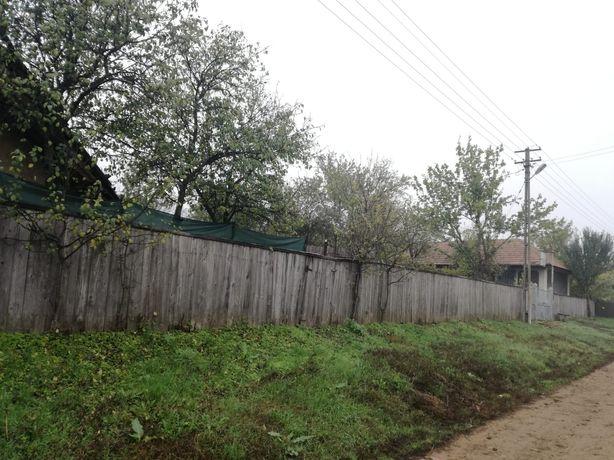 Gospodărie cu 2 case și vie pe spalieri