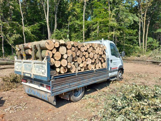 Lemn de foc esenta tare CER-Frasin-Carpen-Salcam-stejar
