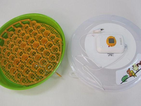 Ново! Инкубатори подходящи и за влечуги и папагали. Инкубатор+подарък