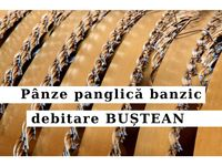 Panza panglica banzic FARMER 4100x40 debitare bustean I Premium GOLD