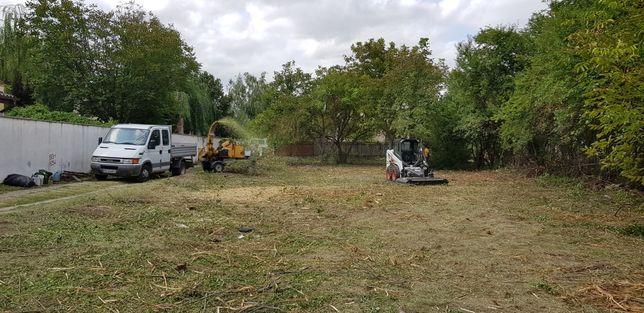 Cosire, curatare - defrisare terenuri, iarba, arbusti, rugi, ambrozie