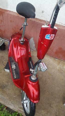 Electric scuter motor 250v