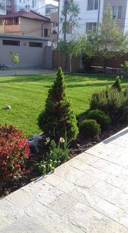 Поддръжка  на градини и дворове, озеленяване и поливни системи.