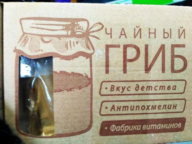 Продам чайный гриб