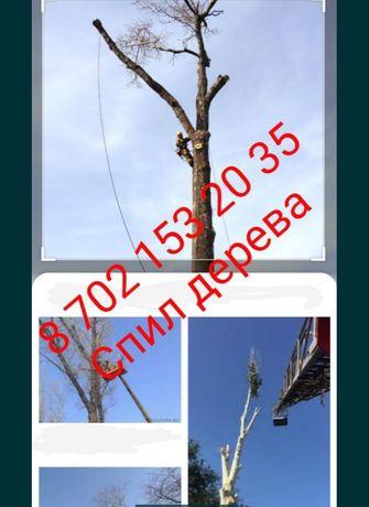 Спил деревьев,агаш кесу распил пилить дерево санитарная обрезка резать