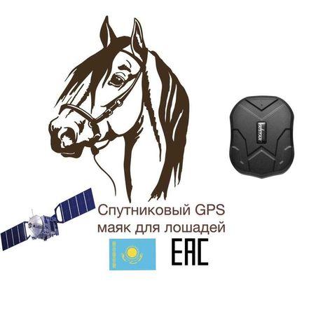 №1 Спутниковый GPS Трекер для лошадей гарантия 12 мес!Батарейка 60 дн