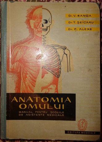 Anatomia Omului Manual Pentru Scolile De Asistente Medicale - V. Ranga