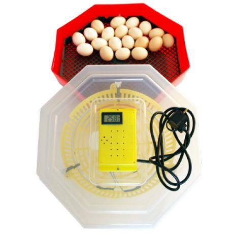 Incubator cu termometru capacitate 60 oua de gaina