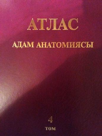Анатомия атлас Синельников на казахском языке