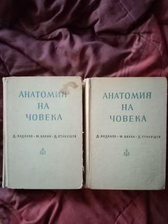 Анатомия на Каданов в два тома