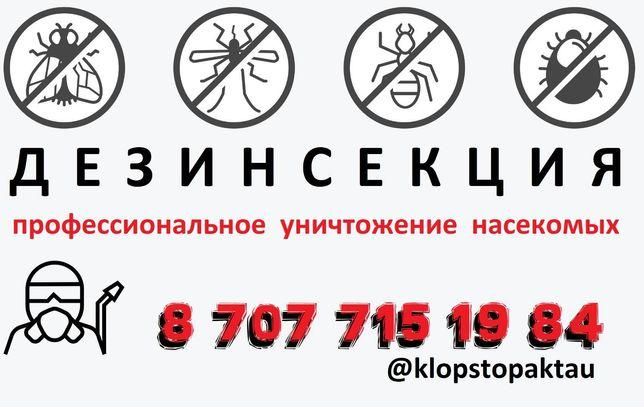 Дезинфекция Дезинфекция Уничтожение всех видов насекомых. Клоп Таракан