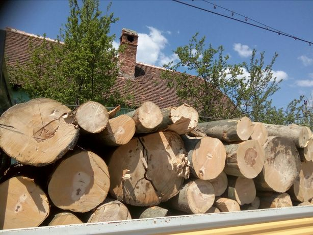 transport lemn foc
