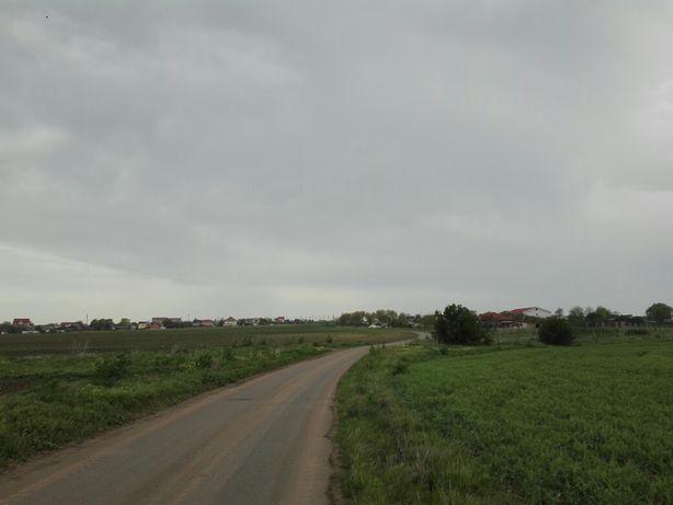 Vând teren Vama Veche