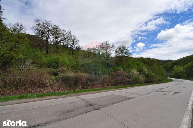 Teren ideal pentru casa de vacanta | 49 km de Cluj-Napoca