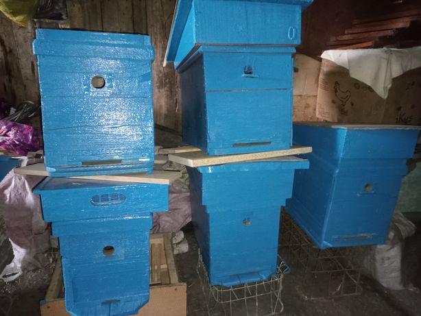 Продам ульи (нуклеусы) для пчёл