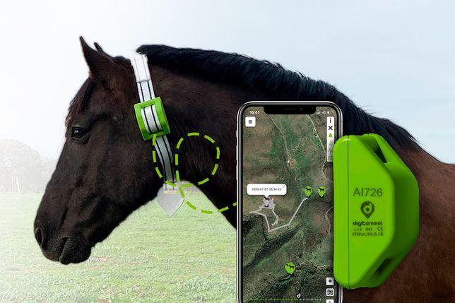 Жылқы Бакылау Онлайн/ GPS для лошадей Актобеге Жеткызу бар
