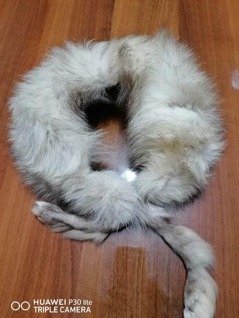 Guler din blana de vulpe polara