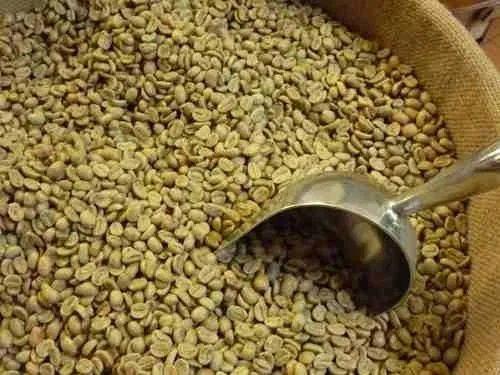 Cafea verde boabe Kenya