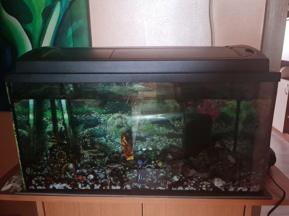 Аквариум  за риби с шкаф