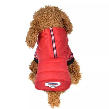 Зимно кучешко палто