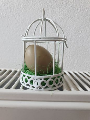 Vand oua de fazan
