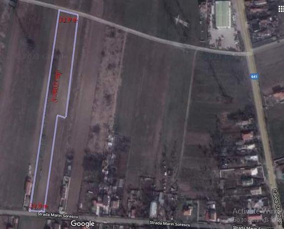 Teren 9025 mp comuna Șimnicu de Sus sat Albești
