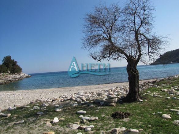 Уникален парцел 895 м2 на остров Тасос с плажна ивица. Отлична локация