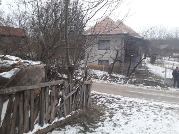 Vind casa in Sacel