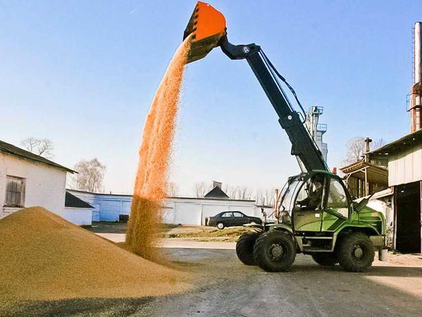 Трактор МТЗ Беларусь