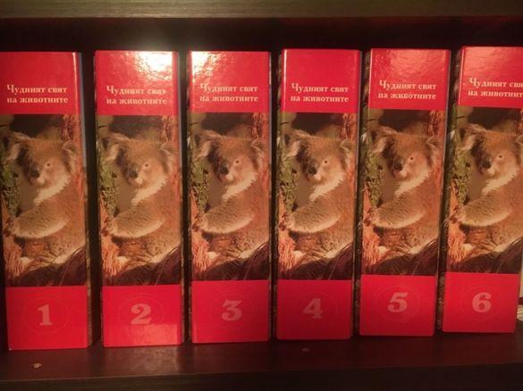 """Енциклопедия """"Чудният свят на животните"""""""