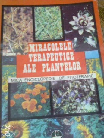 Miracolele terapeutice ale plantelor- Ovidiu Bojor, Octavian Popescu