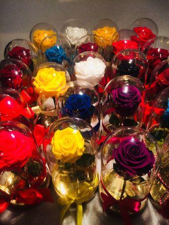 Trandafiri criogenati cadou ce rezista in timp