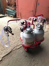 Доильный аппарат SARM-005 2 пульсатора 2 бидона Telsar Турция