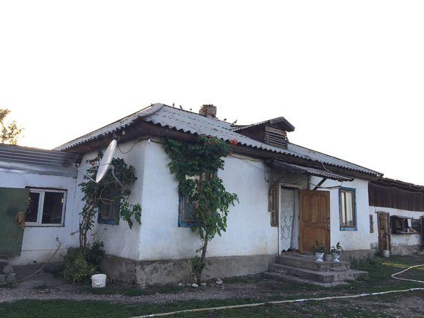Фазенда (дом)