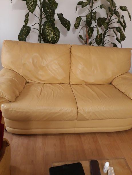 Canapele piele naturala firma nicollet
