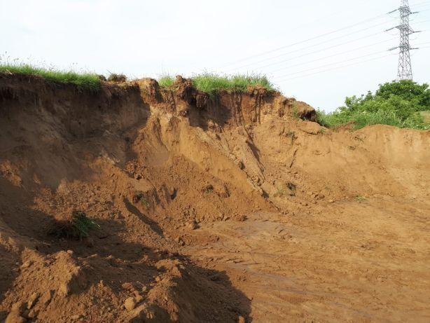 Pământ nisipos / pământ vegetal