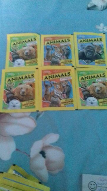 Vând stickere cu animale
