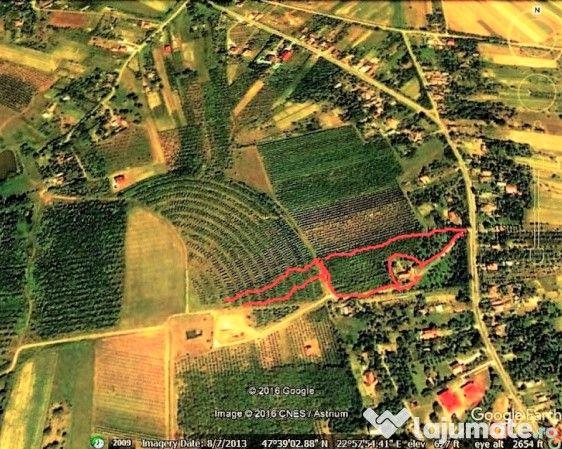 Teren Intravilan)Livada)- in Viile Satu Mare 1,60 ha