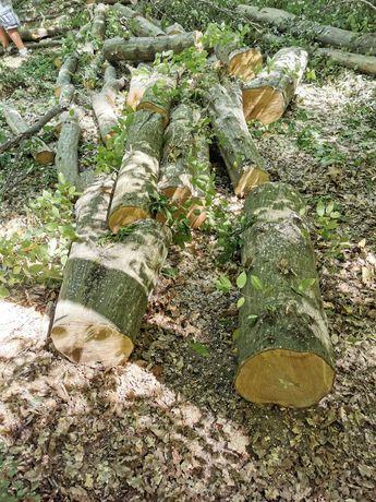 vand lemn de foc la metru sau taite