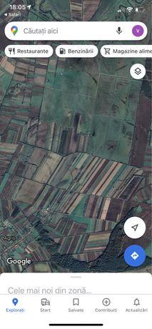 De vanzare teren extravilan arabil si pasune in Agris