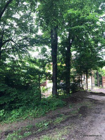 De vânzare teren intravilan la Băile Balvanyos